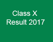 Result Class X